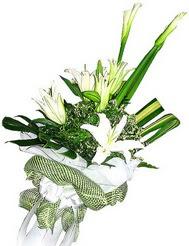 Polatlıda çiçekçi güvenli kaliteli hızlı çiçek  3 dal kazablanka çiçegi ve yesillikler