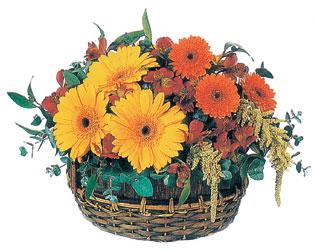 Polatlı çiçek gönderme sitemiz güvenlidir  sepet içerisinde kir çiçekleri tanzimi