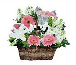 Polatlıdaki çiçekçiler  karisik çiçekler sepet içerisinde