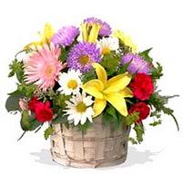 sepette karisik kir çiçekleri çiçek siparişi sitesi  görsel sepet