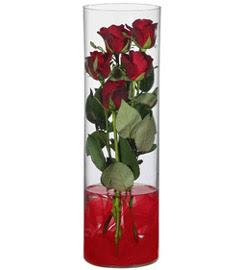 cam içerisinde 7 adet kirmizi gül  Polatlıdaki çiçekçiler