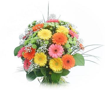 13 adet gerbera çiçegi buketi  Ankara Polatlı online çiçek gönderme sipariş