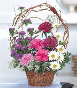 Görsel kir çiçegi sepeti mis kokulu çiçek siparişi sitesi