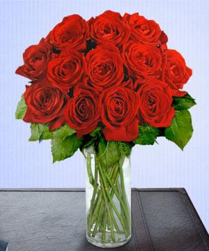 Anneme 12 adet cam içerisinde kirmizi gül çiçek siparişi sitesi