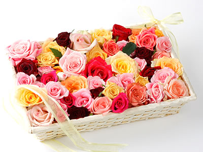 33 adet renkli gül sepet içerisinde  Ankara Polatlı online çiçek gönderme sipariş