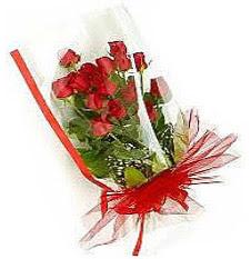 13 adet kirmizi gül buketi sevilenlere  Polatlı çiçek siparişi vermek