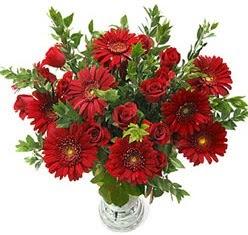 5 adet kirmizi gül 5 adet gerbera aranjmani  Polatlı Ankara hediye çiçek yolla