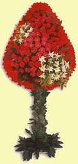 Polatlıda çiçek firması çiçek gönderme  dügün açilis çiçekleri  Polatlı çiçek online çiçek siparişi