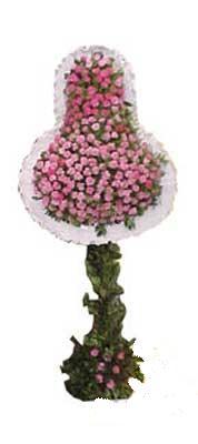 ucuz çiçek gönder  dügün açilis çiçekleri  internetten çiçek siparişi