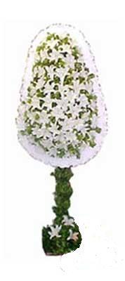 çiçek siparişi sitesi  nikah , dügün , açilis çiçek modeli  Ankara Polatlı online çiçek gönderme sipariş