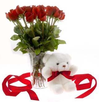 Ankara Polatlı online çiçek gönderme sipariş  12 adet kirmizi gül ve pelus ayicik
