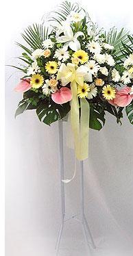 Ankara Polatlı online çiçek gönderme sipariş   perförje çiçegi dügün çiçekleri