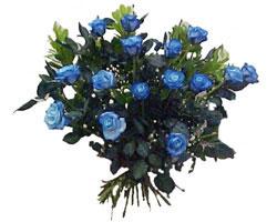 Ankara Polatlı İnternetten çiçek siparişi  9 mavi gül güzel bir buket