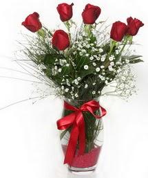 7 adet gülden cam içerisinde güller  14 şubat sevgililer günü çiçek
