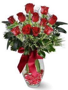 9 adet gül  Polatlı internetten çiçek satışı  kirmizi gül