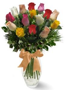 15 adet vazoda renkli gül  Polatlı internetten çiçek satışı