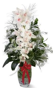 çiçek siparişi sitesi  cam içerisinde 1 dal orkide çiçegi
