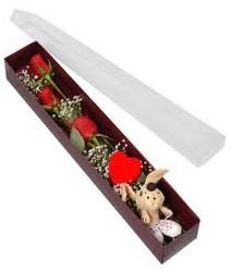 kutu içerisinde 3 adet gül ve oyuncak  cicekciler , cicek siparisi