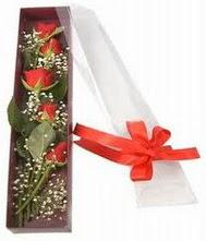 kutu içinde 5 adet kirmizi gül  internetten çiçek siparişi