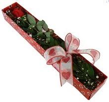 Tek kirmizi gül kutu içerisinde  Polatlıda çiçekçi güvenli kaliteli hızlı çiçek
