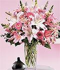 Polatlı çiçek yolla , çiçek gönder , çiçekçi   Kazablanka biçme vazoda