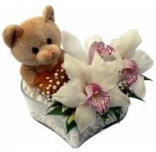 Ankara Polatlı çiçek yolla  15 cm boyutlarinda ayicik ve 1 kandil orkide