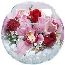 Polatlıya çiçek Ankara çiçekçi telefonları  fanus içinde 1 kandil orkide 3 gül aranjmani