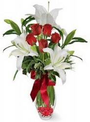 Polatlı çiçek siparişi vermek  5 adet kirmizi gül ve 3 kandil kazablanka