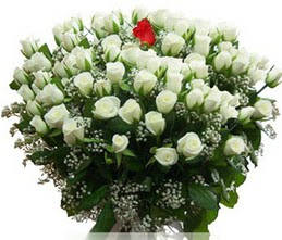 Polatlı internetten çiçek satışı  100 adet beyaz 1 adet kirmizi gül buketi