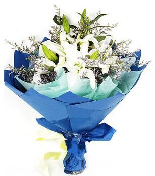 Polatlı anneler günü çiçek yolla  4 adet dal kazablankadan görsel buket