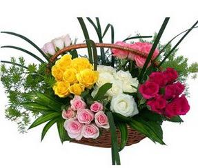ucuz çiçek gönder  35 adet rengarenk güllerden sepet tanzimi