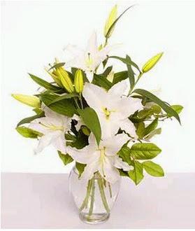 Polatlıda çiçek firması çiçek gönderme  2 dal cazablanca vazo çiçeği