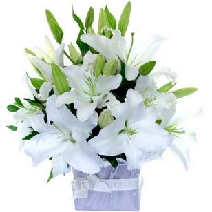 Ankara Polatlı çiçek yolla  2 dal cazablanca vazo çiçeği