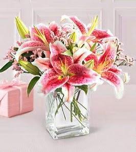 2 dal kazablanka görsel vazosu çiçek siparişi sitesi
