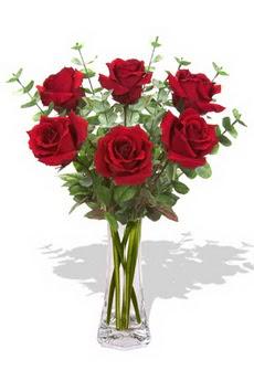 çiçekçi mağazası  6 kırmızı gül vazosu