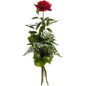 Ankara Polatlı online çiçekçi , çiçek siparişi  1 adet kırmızı gülden buket