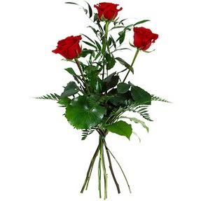 Polatlı uluslararası çiçek gönderme  3 adet kırmızı gülden buket