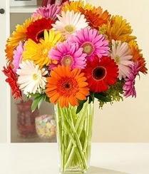 Polatlıdaki çiçekçiler çiçek servisi , çiçekçi adresleri  15 adet gerbera çiçek vazosu