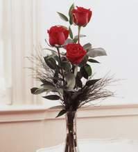 Polatlı internetten çiçek satışı  Vazoda 3 adet güzel gül