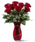 8 adet kırmızı gül sevgilime hediye  Ankara Polatlı İnternetten çiçek siparişi