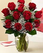 Sevgilime hediye 9 adet 1.ci kalite gül  Polatlı anneler günü çiçek yolla
