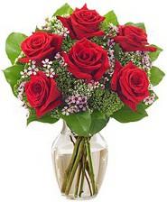 Kız arkadaşıma hediye 6 kırmızı gül  internetten çiçek siparişi