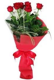 Çiçek yolla sitesinden 7 adet kırmızı gül  Polatlı internetten çiçek satışı