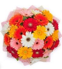 15 adet renkli gerbera buketi  Polatlı yurtiçi ve yurtdışı çiçek siparişi
