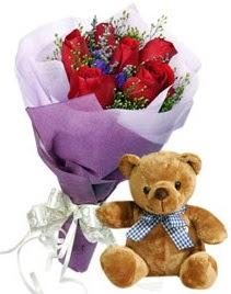 7 adet kırmızı gül 15 cm boyutlarında ayıcık  internetten çiçek siparişi