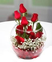 Cam fanus içerisinde 9 adet kırmızı gül  Polatlı çiçek siparişi vermek
