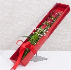 Kutu içerisinde 3 adet kırmızı gül  Ankara Polatlı online çiçek gönderme sipariş