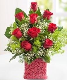 Cam içerisinde 9 adet kırmızı gül  Polatlı internetten çiçek satışı