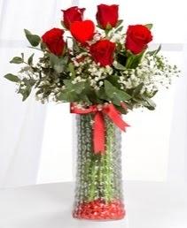Cam vazoda 5 adet kırmızı gül kalp çubuk  ucuz çiçek gönder