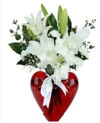 Kalp vazoda 3 kazablanka çiçeği  Ankara Polatlı İnternetten çiçek siparişi